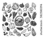 hand drawn vector set of... | Shutterstock .eps vector #582580396