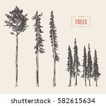 set of pine trees vintage... | Shutterstock .eps vector #582615634