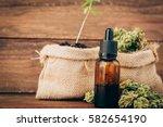medical marijuana | Shutterstock . vector #582654190