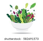 green salad | Shutterstock .eps vector #582691573