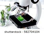 test plant samples on... | Shutterstock . vector #582704104