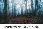 misty forest with person  | Shutterstock . vector #582716008
