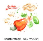 watercolor illustration of... | Shutterstock . vector #582790054