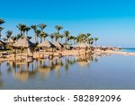 beautiful  beach with palm... | Shutterstock . vector #582892096