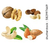 set of vector icons of nuts  ... | Shutterstock .eps vector #582997669