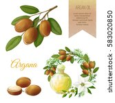 vector set on argan  its fruits ... | Shutterstock .eps vector #583020850