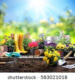 gardening   equipment for... | Shutterstock . vector #583021018