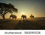 three elephants walking the... | Shutterstock . vector #583090528