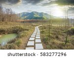 sunset in the woods corridor | Shutterstock . vector #583277296