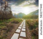 forest road | Shutterstock . vector #583277440