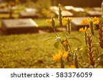 retro of cemetery with yellow... | Shutterstock . vector #583376059