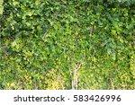 green wall texture | Shutterstock . vector #583426996