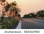 meadow flowers  beautiful fresh ... | Shutterstock . vector #583432984