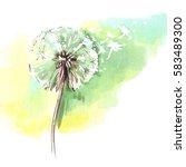 dandelion flower  blowing seeds ... | Shutterstock . vector #583489300