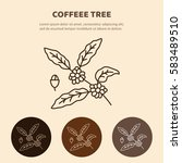 coffee tree branch with beans.  ... | Shutterstock .eps vector #583489510