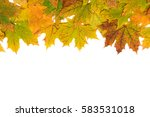 autumn maple leaves on a white... | Shutterstock . vector #583531018