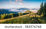 bright summer morning in the... | Shutterstock . vector #583576768
