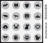 set of 16 editable zoology... | Shutterstock .eps vector #583602808