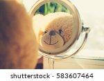 Teddy Bear Looking In The Mirror