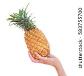 a pineapple.pipe pineapple in...   Shutterstock . vector #583755700