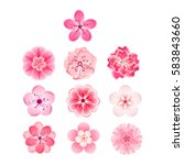 Isolated Flowers Of Sakura Set...
