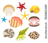 set of sea shells  oysters with ... | Shutterstock .eps vector #583882489