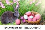 easter eggs in fresh green...   Shutterstock . vector #583909840