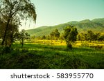 landscape view of huay tueng... | Shutterstock . vector #583955770