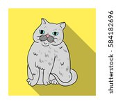 exotic shorthair icon in flat... | Shutterstock .eps vector #584182696