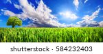 panoramic landscape  green... | Shutterstock . vector #584232403