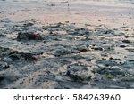 beach pollution. plastic... | Shutterstock . vector #584263960