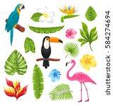 Illustration Set Tropical...