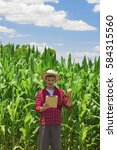 Small photo of Farmer or agronomist very happy with hat using digital tablet computer in cultivated corn field plantation. Modern technology application in agricultural growing activity. Concept Image.