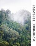 cloudy forest | Shutterstock . vector #584414914