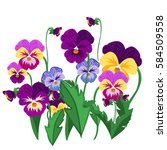 Set Of Pansy Flowers Violet...