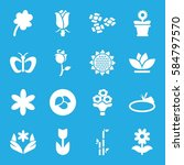 Floral Icons Set. Set Of 16...
