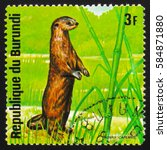 Small photo of MOSCOW, RUSSIA - FEBRUARY 19, 2017: A stamp printed by Burundi shows African clawless otter (Aonyx capensis), series Animals Burundi, circa 1975