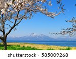 mt.bandai and inawashiro lake ... | Shutterstock . vector #585009268