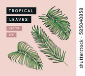 vector tropical leaves set.... | Shutterstock .eps vector #585040858