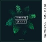 tropical leaves. exotic tree... | Shutterstock .eps vector #585041143
