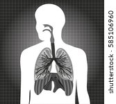 human system respiratory vector ... | Shutterstock .eps vector #585106960