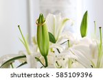 one ring on the flower   Shutterstock . vector #585109396