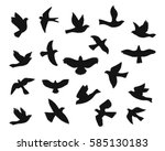 Set Of Bird Flying Silhouettes...