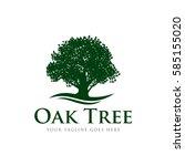 oak tree concept logo icon... | Shutterstock .eps vector #585155020