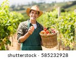 portrait of happy farmer... | Shutterstock . vector #585232928