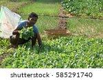 amravati  maharashtra  india  3 ... | Shutterstock . vector #585291740