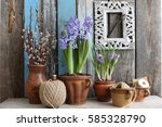 Floral Scene With Blue Hyacint...