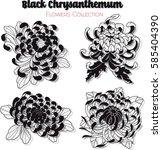 vector black chrysanthemum... | Shutterstock .eps vector #585404390