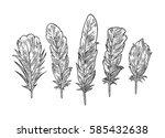 set feathers. vintage black...   Shutterstock .eps vector #585432638