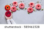 Small photo of Dreaming concept. Creative Spring bouquet Gerbera flowers in woman hands on the table of concrete texture. 8 march holiday. Design pattern.